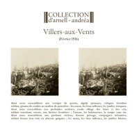 COLLECTION D'ARNELL-ANDREA - VILLERS-AUIX-VENTS [LIMITED] LP