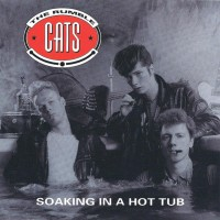 THE RUMBLE CATS - SOAKING IN A HOT TUB CD