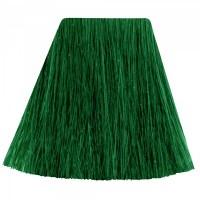 SEMI PERMANENT HAIR DYE - VENUS ENVY