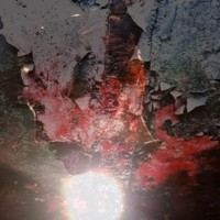 BOOTBLACKS - VEINS [LIMITED] LP