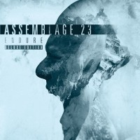 ASSEMBLAGE 23 - ENDURE [LIMITED DELUXE] 2CD