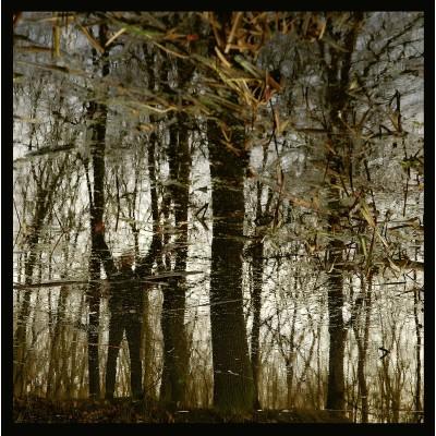 APOPTOSE - BANNWALD [LIMITED] LP