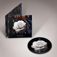 BOOTBLACKS - THIN SKIES CD