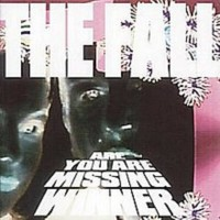 THE FALL - ARE YOU ARE MISSING WINNER 4DIGICD BOX